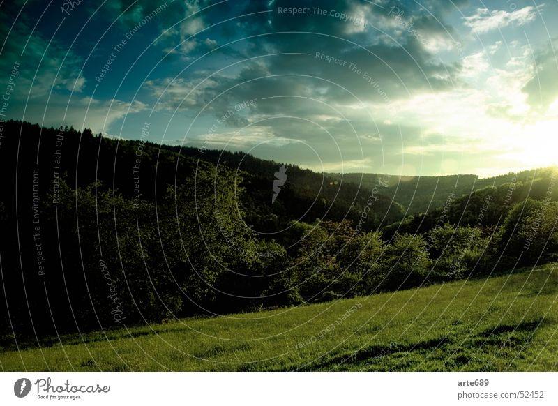 Stiller Abschied ruhig Sonnenuntergang Wald Horizont Wolken Natur Himmel schönau
