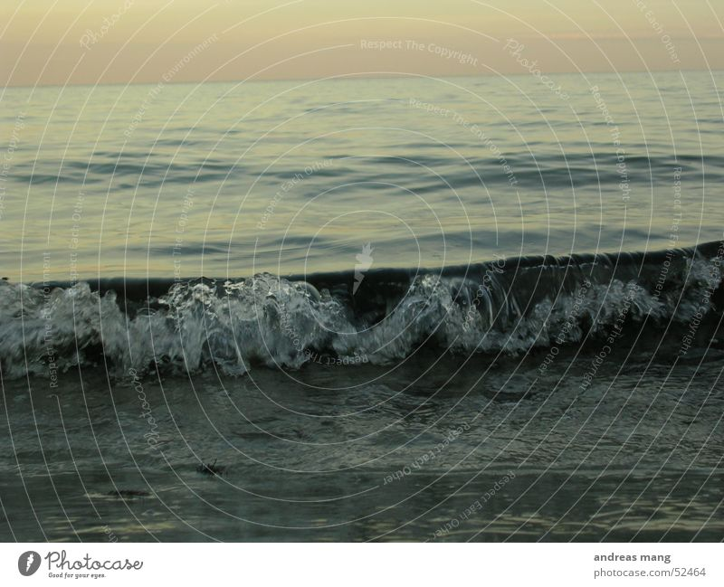 Miniatur Welle Wellen Meer Strand See Teich Ostsee Wasser kräuseln Ferne wave sea ocean water