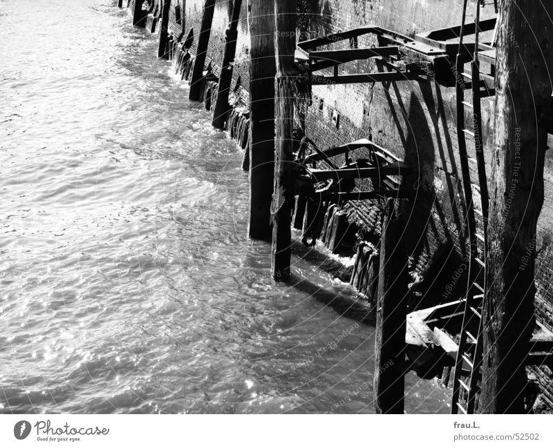 Hafenmauer Hamburger Hafen Grauwert Mauer Anlegestelle Wasser muddelig Pfosten Sonne Treppe Leiter Elbe