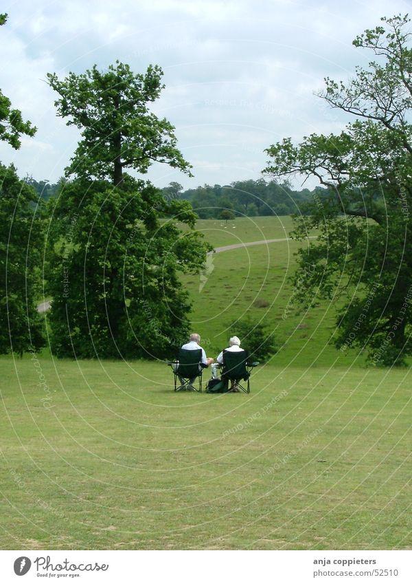 An afternoon in the park Mensch grün Park sitzen