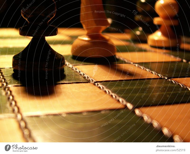 ...am Boden Schachfigur Schachbrett Holz Quadrat Dame kariert grün weiß schwarz dunkel Licht böse Duell Spielen glänzend Beginn Pferd planen Eisenbahn