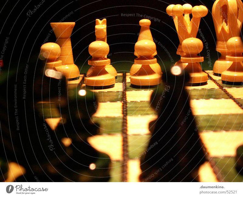 Fein rausgeputzt Schachfigur Schachbrett Holz Quadrat Dame kariert grün weiß schwarz dunkel Licht böse Duell Spielen Anordnung Beginn Pferd planen Eisenbahn