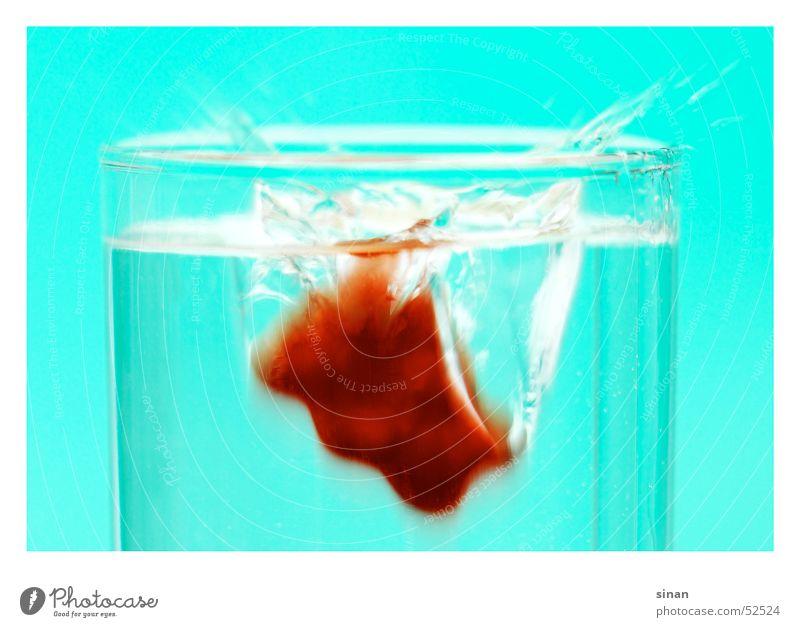 sPLasH Wasser blau rot Ernährung Tier Bewegung klein Glas nass süß tauchen lecker Süßwaren türkis frieren spritzen