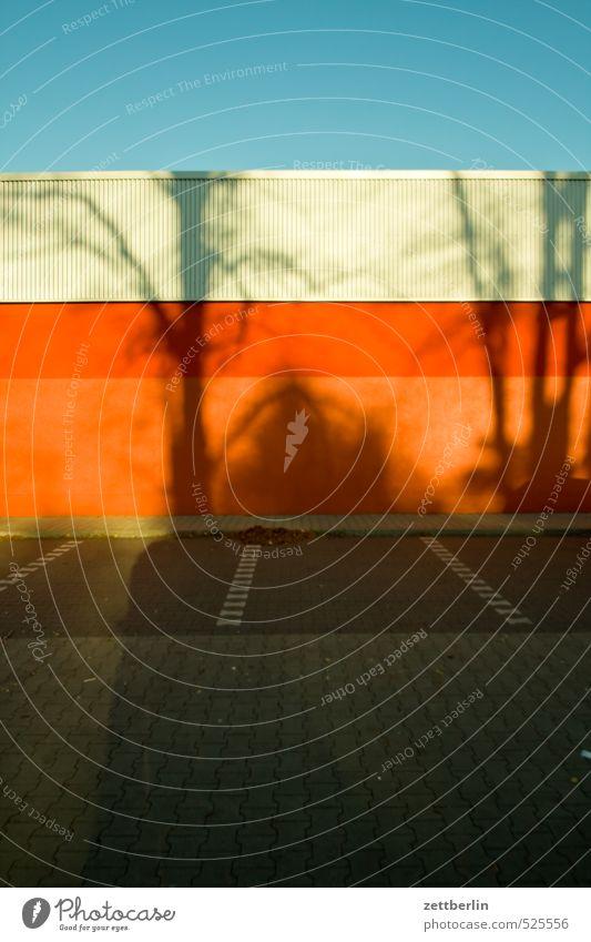 Parkplatz zu verschenken Umwelt Herbst Klima Klimawandel Schönes Wetter Baum Stadt Stadtzentrum Menschenleer Gebäude Mauer Wand Fassade Dach Verkehr