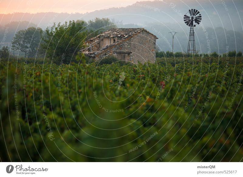 French Style XXI Natur Landschaft Umwelt gehen Zufriedenheit ästhetisch Wein Bauernhof Frankreich abgelegen verträumt Windrad Weinbau ursprünglich Provence