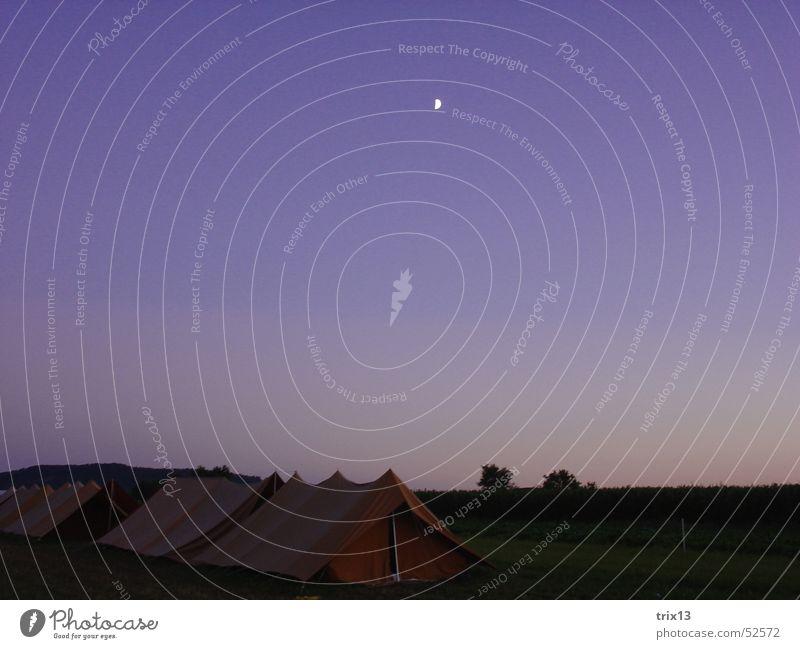zelten... Natur Himmel dunkel Wiese schlafen violett Mond Zelt Lager Spatz