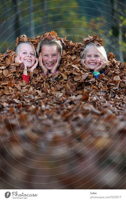 Mädels im Laub Freude Glück Garten Mensch feminin Mädchen Kindheit 3 8-13 Jahre Natur Landschaft Herbst Wald Fröhlichkeit Blatt verstecken Versteck Printmedien