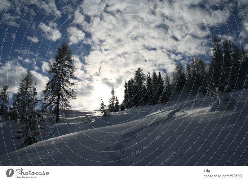 Ein Wintertraum Wolken Baum Tiefschnee Schnee kalt Sonne Himmel