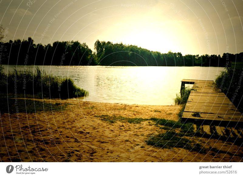 ein perfekter tag Natur Wasser Himmel Sonne Strand ruhig gelb Leben Erholung Holz Glück träumen Sand Landschaft Zufriedenheit Stimmung