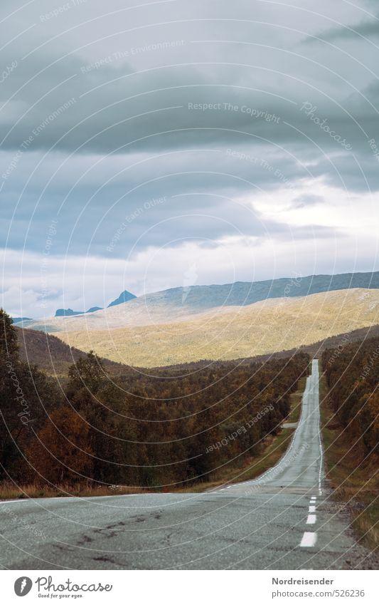 Lass uns fahren.... Ferien & Urlaub & Reisen Tourismus Abenteuer Landschaft Wolken Wetter Wald Berge u. Gebirge Verkehr Straße Ferne Unendlichkeit Beginn