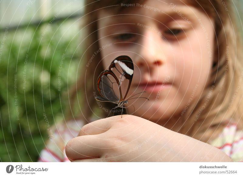Nina und der Schmetterling Kind Natur Insekt