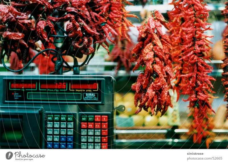 Capsicum frutescens Scharfer Geschmack Kräuter & Gewürze Gemüse Markt Chili Cayennepfeffer