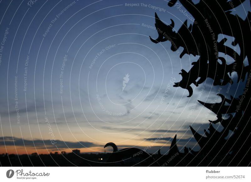 stürmig Himmel dunkel Dekoration & Verzierung Wildtier Bauwerk historisch mystisch antik Ornament unheimlich Schnörkel Eisentor