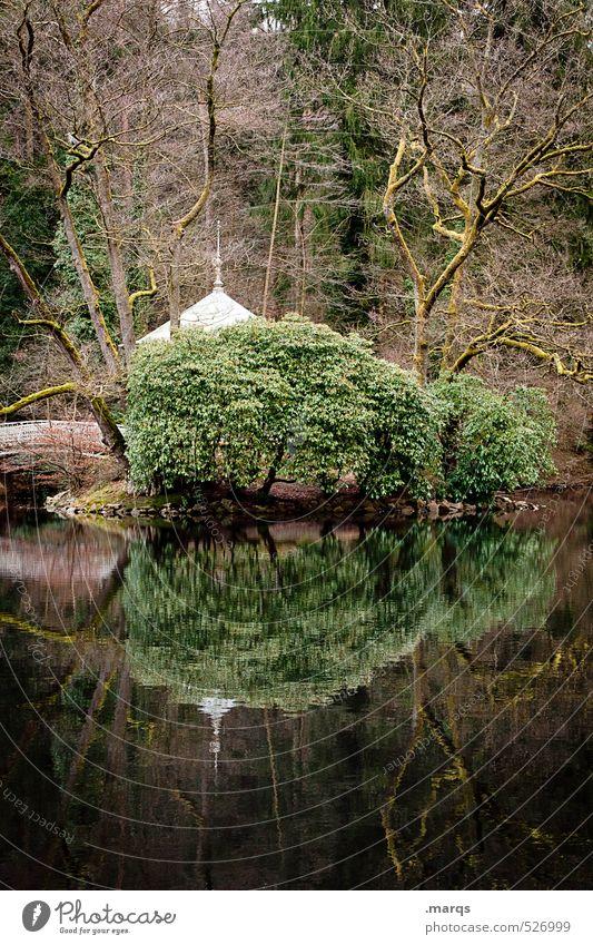 Waldsee Ausflug Umwelt Natur Landschaft Wasser Herbst Pflanze Baum Sträucher Seeufer Pavillon einfach schön Stimmung Idylle ruhig Farbfoto Außenaufnahme