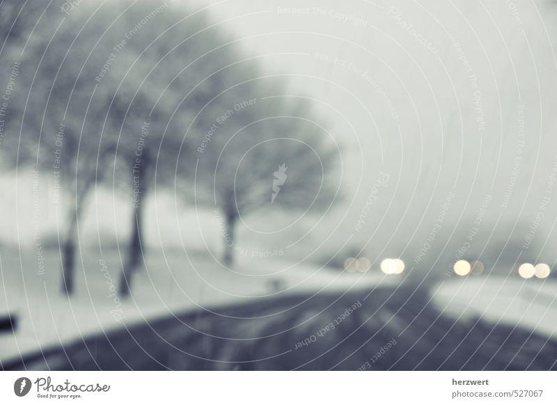Winterzeit ruhig Schnee Schneefall Wetter