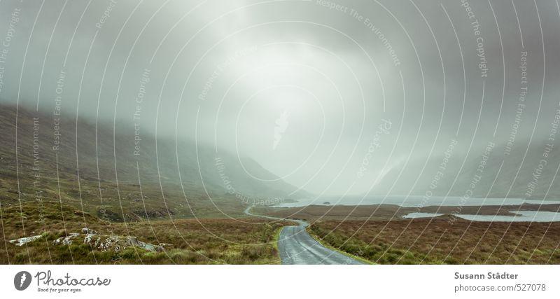 Connemara ohne Pony Nebel Berge u. Gebirge Bucht Fjord entdecken Erholung mystisch Nordirland Elfe Einsamkeit Herbstlaub Straße Menschenleer Farbfoto