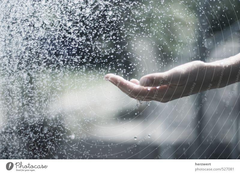 Wasser marsch schön Hand Leben Gefühle Stimmung Wassertropfen berühren festhalten
