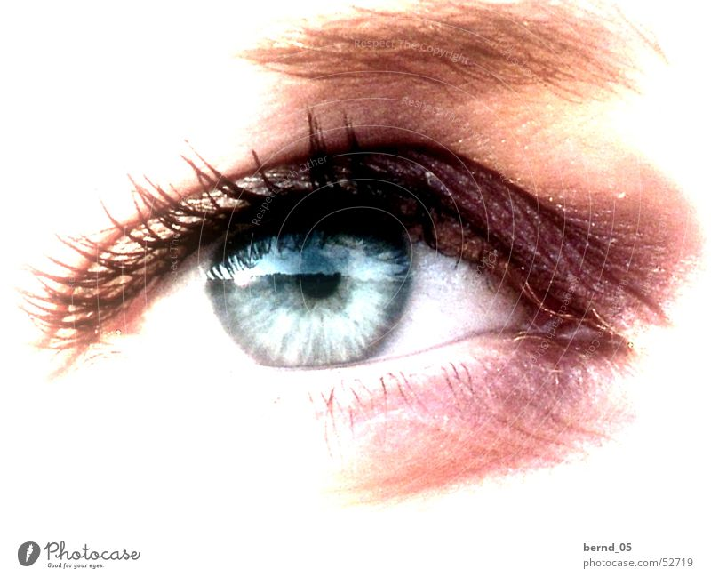Der Blick Frau Mensch Auge Gesicht