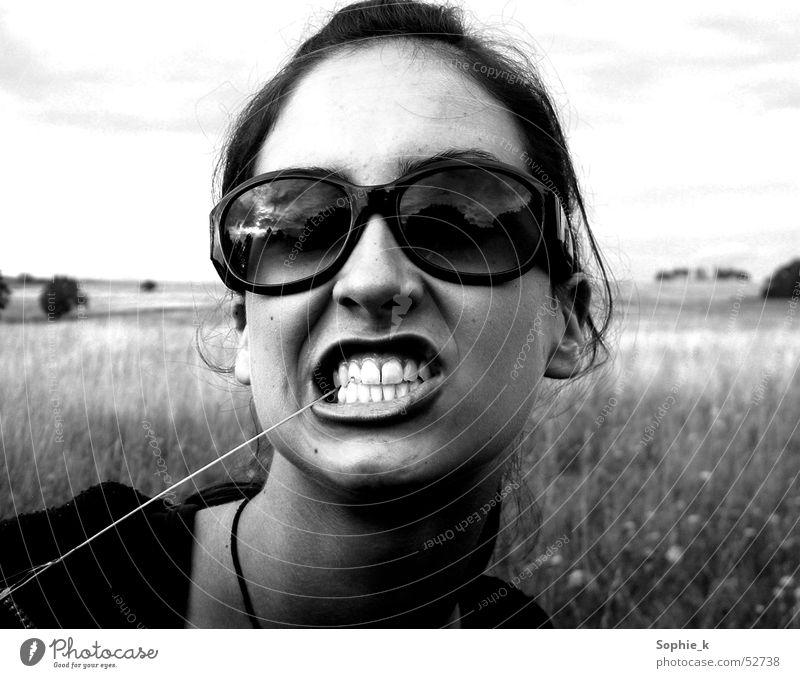 Zähne fletschen Sommer Wiese Gras Sonnenbrille Brille
