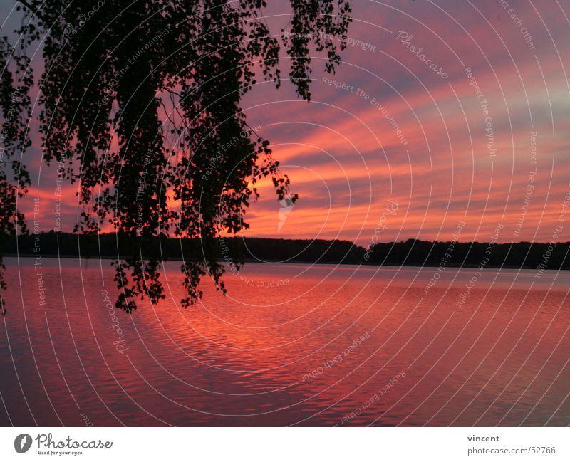 vince002 See Meer Strand Teich Abend rot Einsamkeit ruhig Abenddämmerung Sonne Wasser Reflexion & Spiegelung sea dusk red sun water