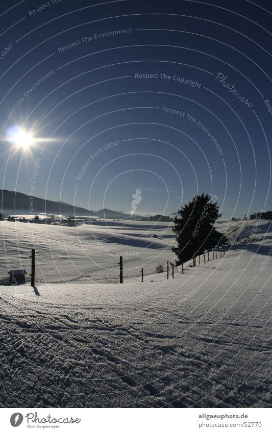 Königswinter Sonne Winter Schnee Allgäu Traumlandschaft Roßhaupten Königswinkel Landkreis Ostallgäu