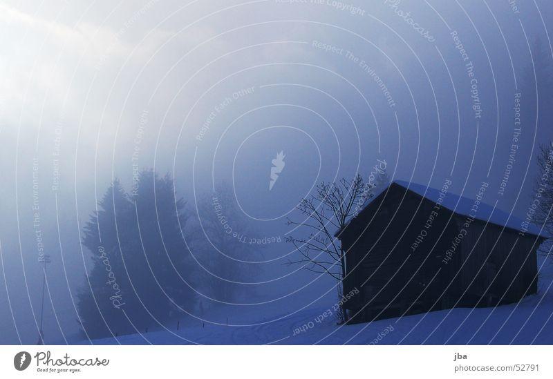Nebel Baum blau Winter Wolken kalt Schnee Nebel Tanne Laterne Hütte bedecken Pulver spukhaft Skipiste