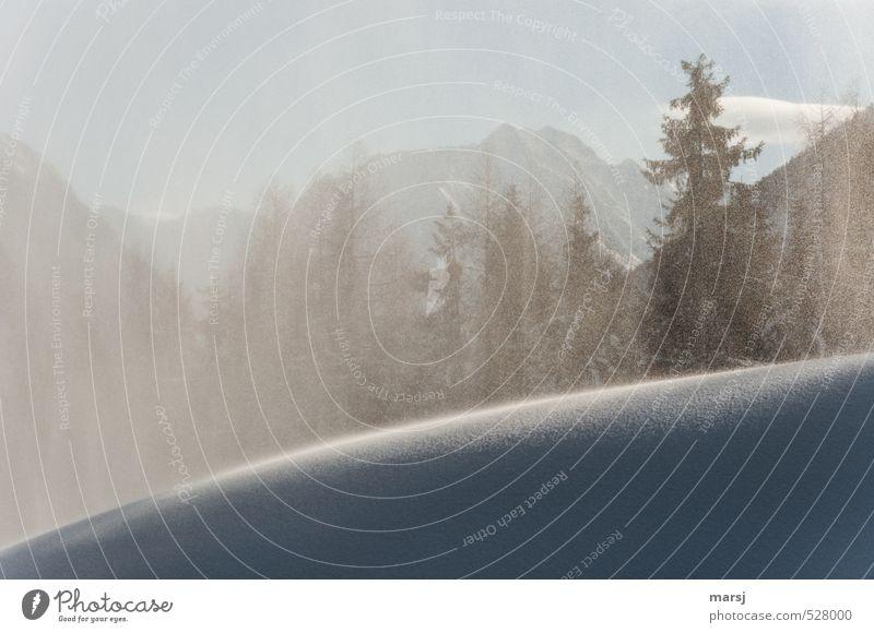 Schneegestöber Himmel Natur Ferien & Urlaub & Reisen Pflanze Sonne Baum Landschaft Wolken Winter Wald kalt Berge u. Gebirge natürlich träumen Schneefall