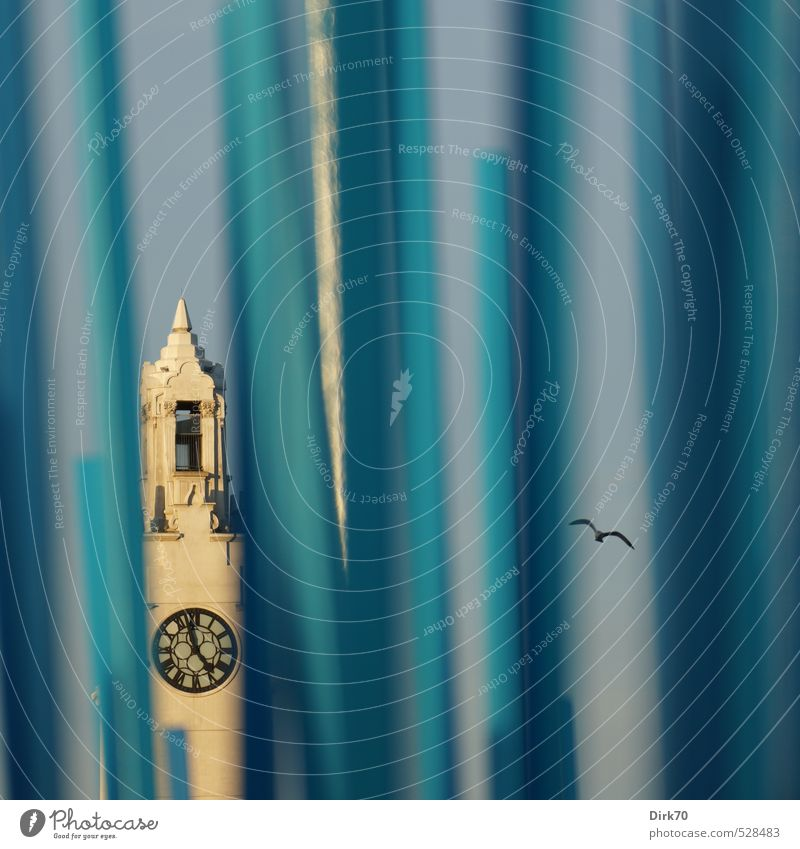 Tour d`Horloge, Montreal Uhr Turmuhr Schönes Wetter Kanada Québec Nordamerika Hafenstadt Uhrenturm Denkmal Tour d'Horloge Kriegerdenkmal Schifffahrt Tier Vogel