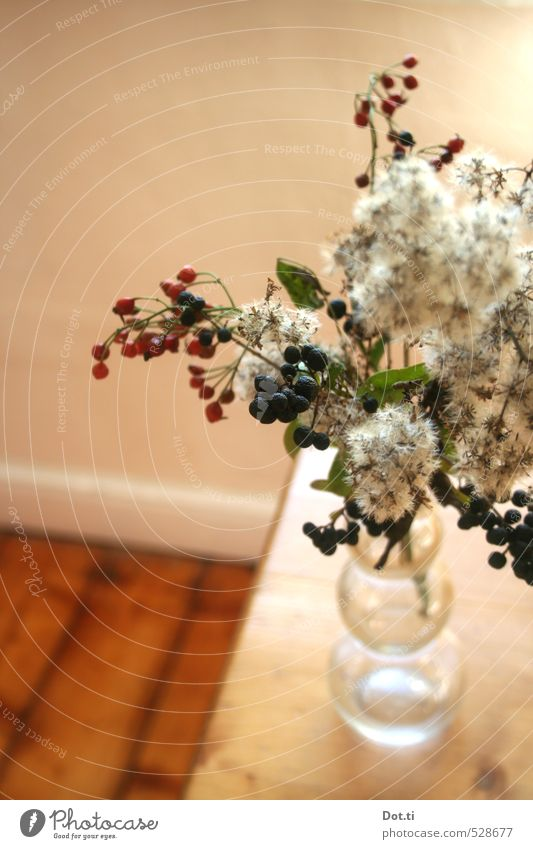 schon wieder Herbst Häusliches Leben Wohnung Tisch Pflanze Dekoration & Verzierung Holz Stimmung Beeren Zweige u. Äste Hagebutten Vase Wildpflanze herbstlich
