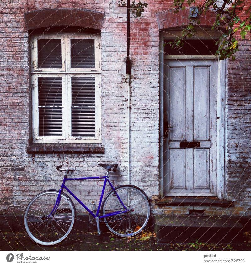 Häusliche Ansichten I Wohnung Haus Fahrrad Altstadt Mauer Wand Fenster Tür Fassade alt hässlich einzigartig kaputt niedlich retro trashig blau braun schwarz