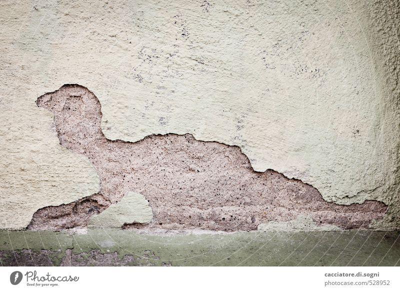 Urviech Mensch grün Einsamkeit Tier dunkel Wand Mauer außergewöhnlich braun Angst Fassade verrückt kaputt Kreativität Verfall gruselig