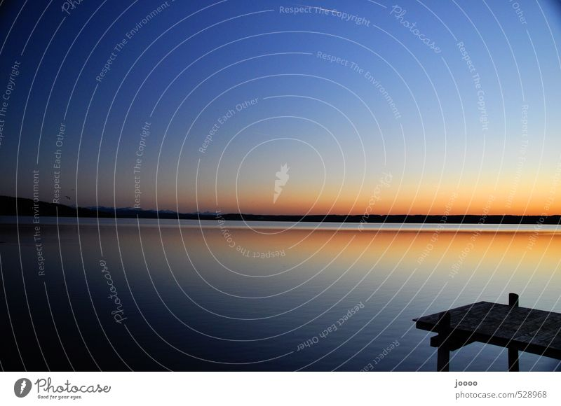 Sonnenuntergang am See Landschaft Wasser Himmel Wolkenloser Himmel Alpen Seeufer ästhetisch orange Horizont ruhig Steg Ammersee Farbfoto Außenaufnahme