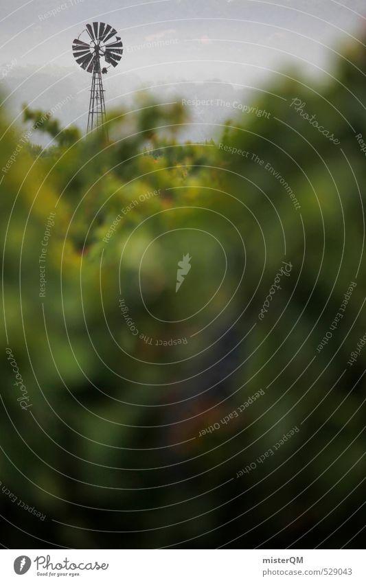 French Style XXXII Kunst ästhetisch Wind Windrad Windmühle Frankreich Provence grün Wein Morgen Morgendämmerung Morgennebel Farbfoto Gedeckte Farben