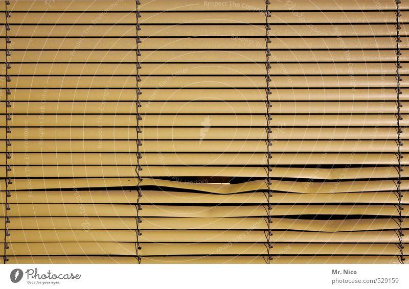blick riskieren ? Lifestyle Häusliches Leben Wohnung Haus Raum Gebäude Fenster beobachten gelb Sicherheit Schutz Rollo Jalousie kaputt Linie Neugier