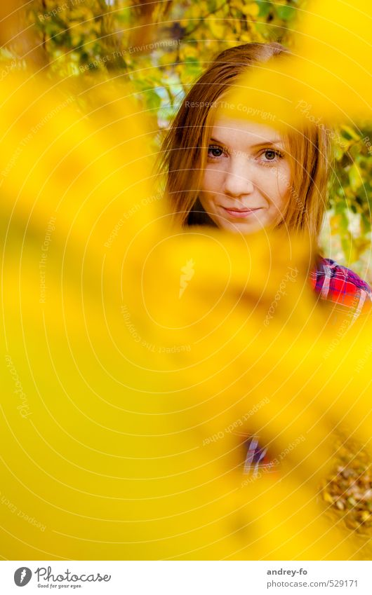 Herbst-Portrait feminin Junge Frau Jugendliche Erwachsene Kopf Gesicht 1 Mensch 13-18 Jahre Kind 18-30 Jahre Blatt rothaarig Blick Freundlichkeit Fröhlichkeit