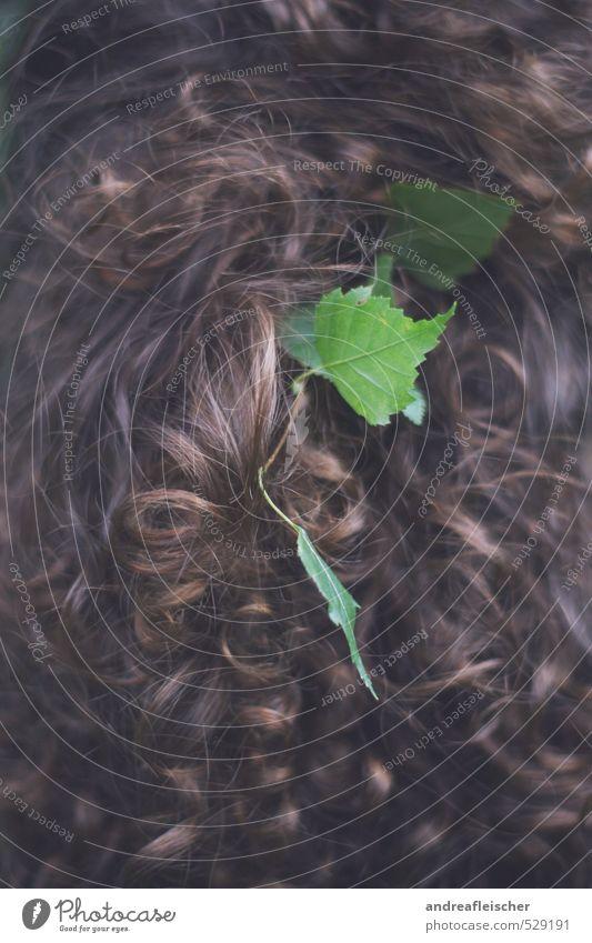 Lockenkopf. feminin Junge Frau Jugendliche Kopf 1 Mensch 18-30 Jahre Erwachsene Haare & Frisuren brünett Gefühle Blatt grün braun Romantik klassisch