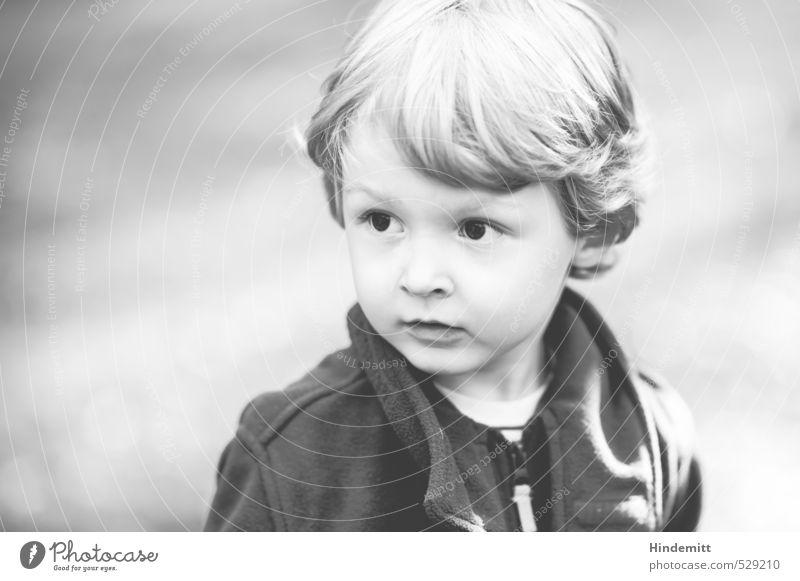 Emil Mensch Kind Gesicht Wiese Herbst Spielen klein Denken maskulin blond Kindheit warten Ausflug Freundlichkeit T-Shirt Neugier