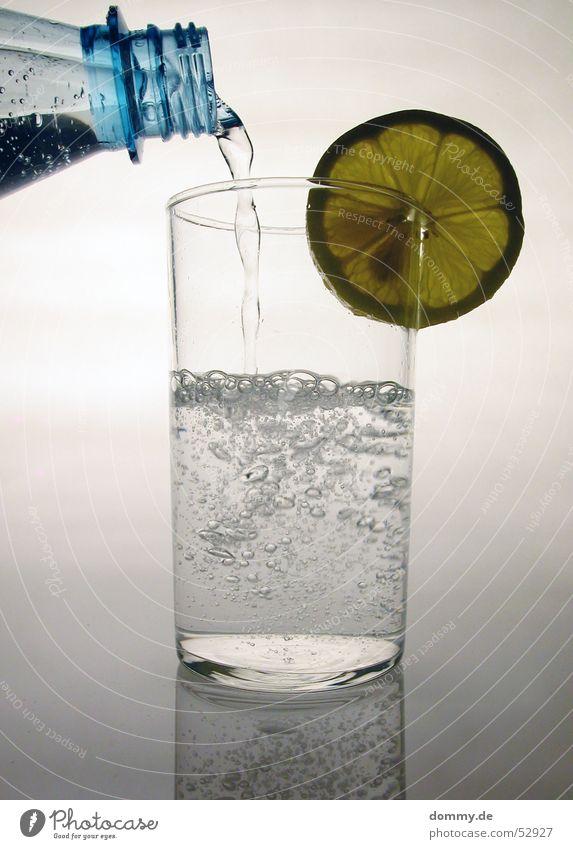 Zitronenwasser II Natur Wasser weiß Glas trinken rund Flüssigkeit Flasche silber Hals gießen Trinkwasser Mineralwasser füllen