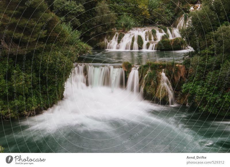 Alles fließt... Sommerurlaub Strand Schönes Wetter Wärme Wasserfall heiß Kroatien Romantik fließen Fluss grün Dalmatien Nationalpark krka Baum Seeufer Farbfoto