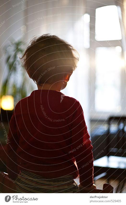 Morgens ist die Welt noch in Ordnung Mensch Kind rot Freude Gefühle Junge Autofenster Stimmung Körper Wohnung Kindheit Zufriedenheit Sicherheit Schutz Vertrauen