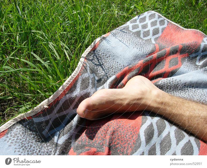 der Fuss Mensch Sonne Sommer Leben Erholung Wiese Gefühle Fuß Ausflug Decke Gliedmaßen