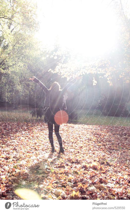 Welcome autumn! Mensch Jugendliche Baum Junge Frau 18-30 Jahre Erwachsene feminin Freiheit Park Tanzen Warmherzigkeit Punkt Herbstlaub Blendenfleck