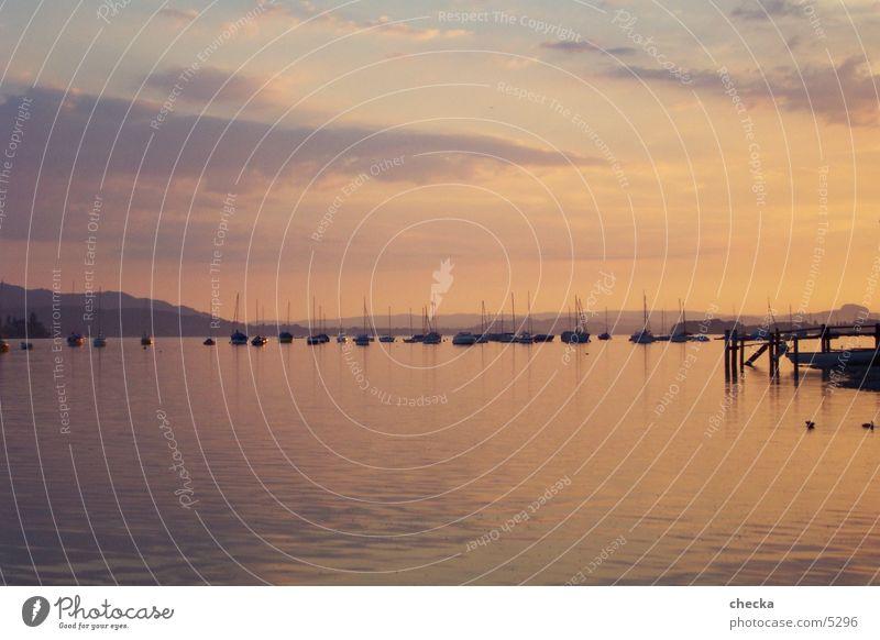 Bodensee See Wasserfahrzeug Segeln Segelboot Abend Abendstimmumg
