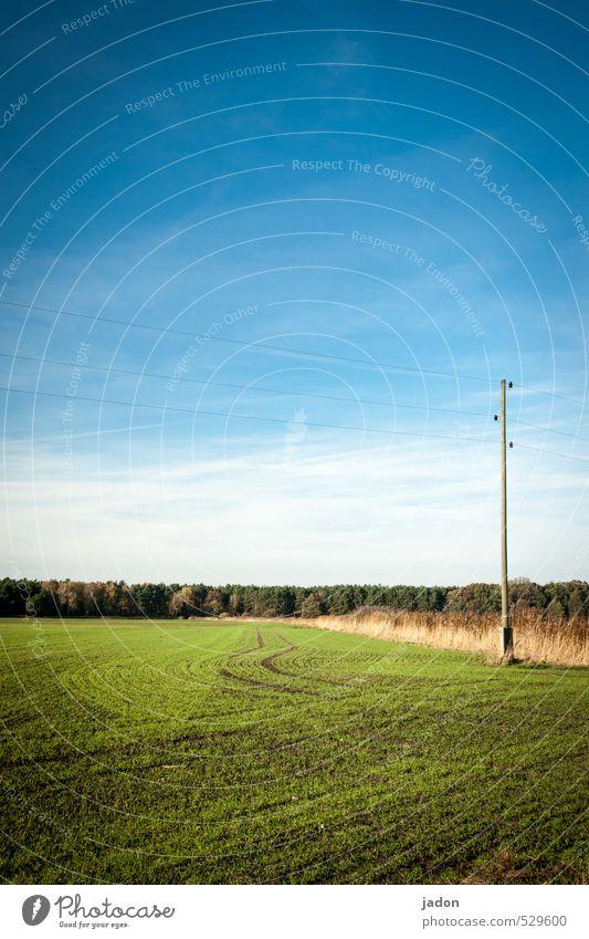 umleitung. Telekommunikation Energiewirtschaft Himmel Herbst Schönes Wetter Gras Feld Wege & Pfade Linie blau Horizont Ferne Kurve Strommast Kabel Verbindung