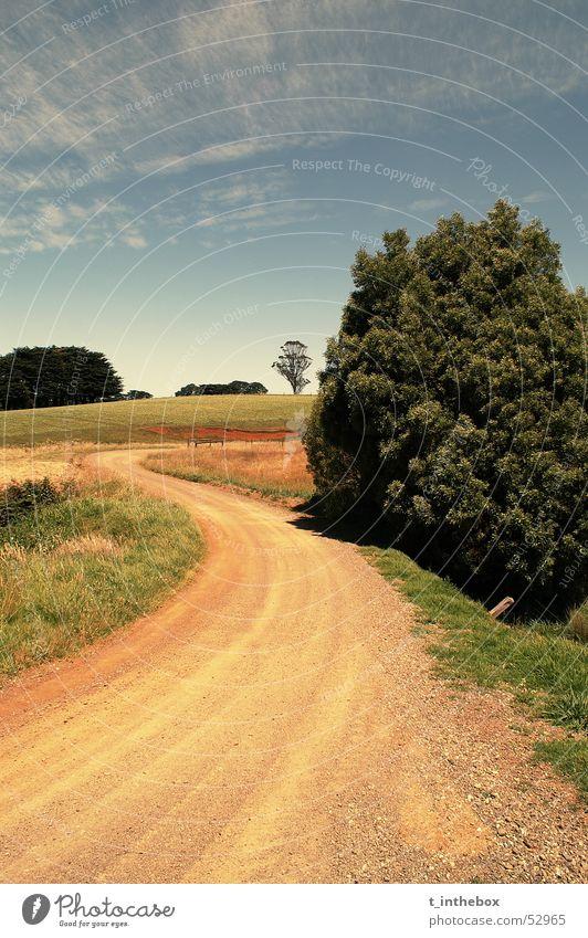 Landscape Natur Himmel orange Bauernhof Länder Australien Victoria Gippsland