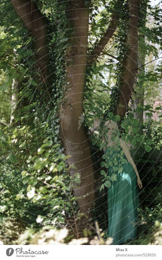 Waldfee Mensch feminin Junge Frau Jugendliche 1 18-30 Jahre Erwachsene Umwelt Natur Pflanze Baum Efeu Grünpflanze Urwald Kleid blond grün Märchenwald Fee Elfe