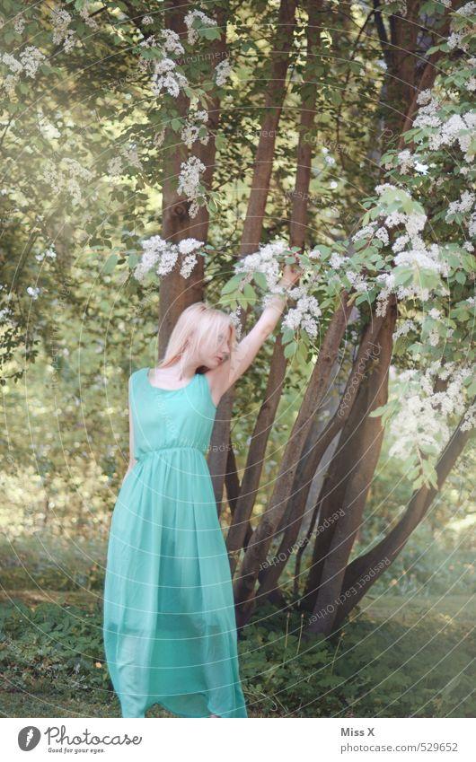 Maid Mensch Jugendliche schön grün Sommer Baum Junge Frau ruhig Blatt 18-30 Jahre Wald Erwachsene Erotik feminin Gefühle Frühling