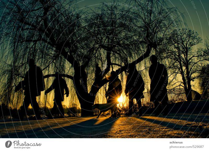 Schemenhafte Spaziergänger im Gegenlicht Gesundheit Ausflug Winter Schnee wandern Mensch 5 Menschengruppe Umwelt Natur Landschaft Pflanze Sonne Sonnenaufgang