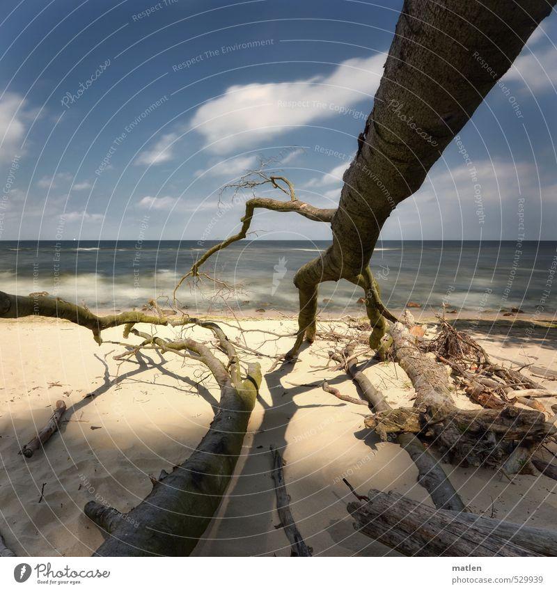 access Himmel Natur blau weiß Pflanze Baum Meer Landschaft Wolken Strand Küste grau Sand Horizont braun Wellen