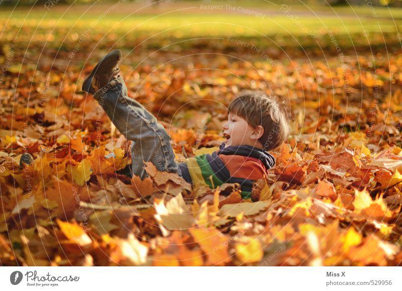 Salto Mensch Kind Freude Blatt Wald Gefühle Herbst Junge Spielen Glück Garten liegen Stimmung Park Freizeit & Hobby Kindheit